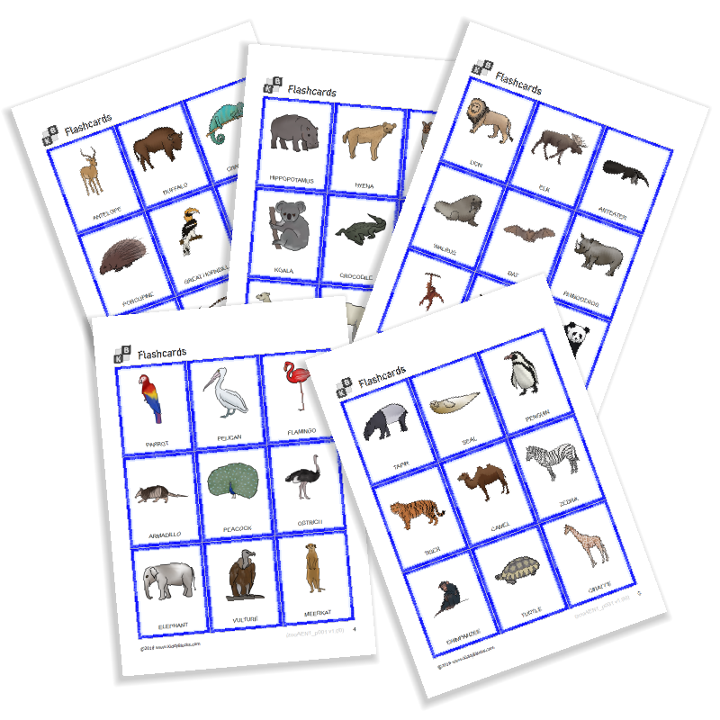 Flashcards - Zoo Animals